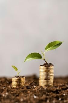 Vorderansicht von pflanzen mit auf schmutz gestapelten münzen und kopierraum