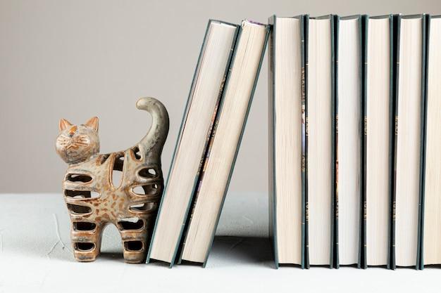 Vorderansichtbücher mit katzenstand