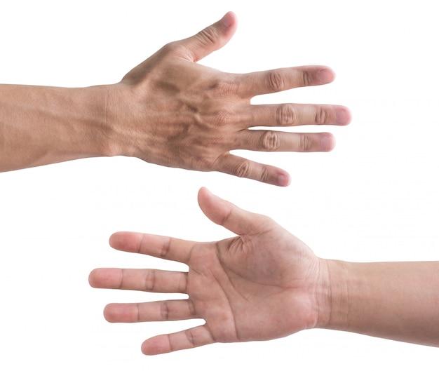 Vordere und hintere hand getrennt auf weiß
