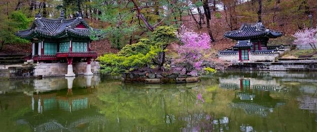 Vorfrühling am buyongji-teich in den gärten des changdeokgung-palastes