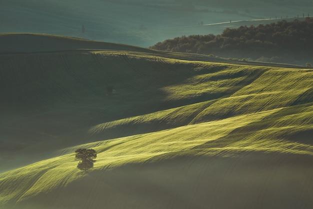 Vorfrühlingsmorgen auf toskana-landschaft, italien.
