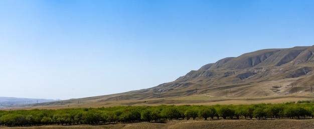 Vorgebirgslandschaft mit fluss und bäumen