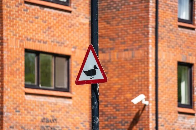 Vorsicht enten, die das verkehrszeichen der britischen straße überqueren