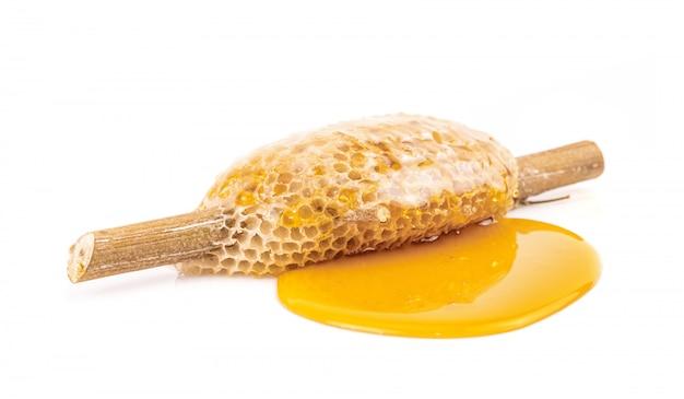 Wabe mit süßem honig auf trockenem zweig isoliert