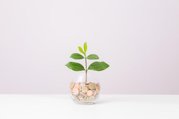 Wachstum des geschäftskonzeptes