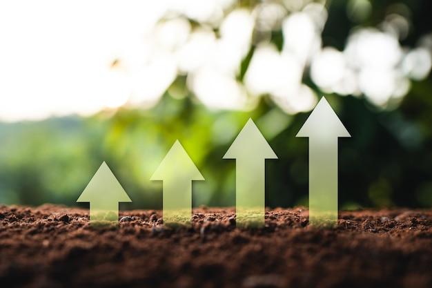 Wachstum pfeil nach oben natürliches natürliches licht am abend