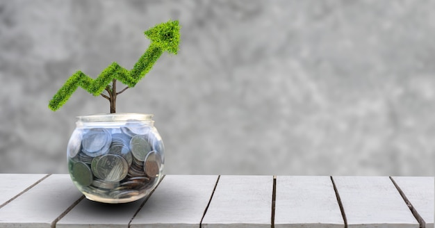 Wachstumsgeschäft. der baum wächst zu einer form heran, die auf die konzepte des wachstums von finanzunternehmen hinweist.