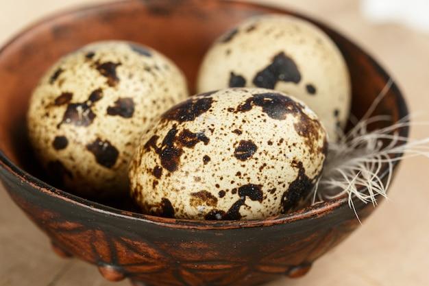 Wachtel frische bio-eier