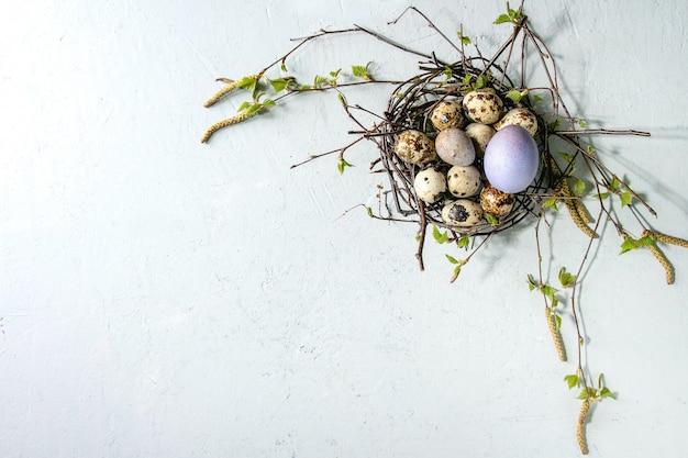 Wachtel-ostereier im nest