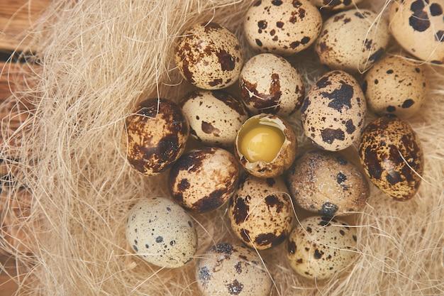 Wachtelostereier im nest auf hölzernem.