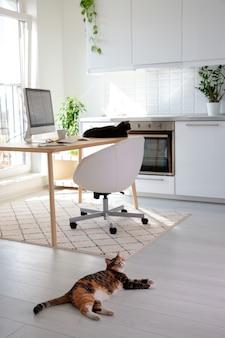Während der besitzer nicht zu hause ist oder nicht sieht, schlafen zwei katzen auf dem tisch neben dem schreibtisch und dem boden. freiberuflicher arbeitsplatz
