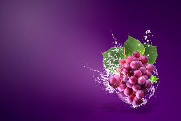 Wässern sie das spritzen auf frischen roten trauben über purpur
