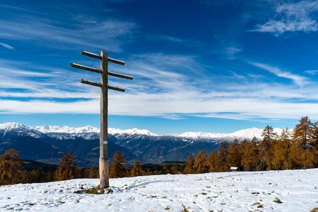 Wald bedeckt mit schnee in südtirol, dolomiten, italien