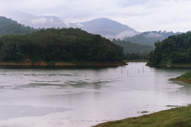 Wald- und wasserlandschaft am hala-bala-naturschutzgebiet