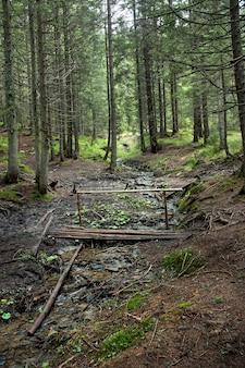 Waldbach mit brücke. zauberwald. schöne frühlingswaldlandschaft.