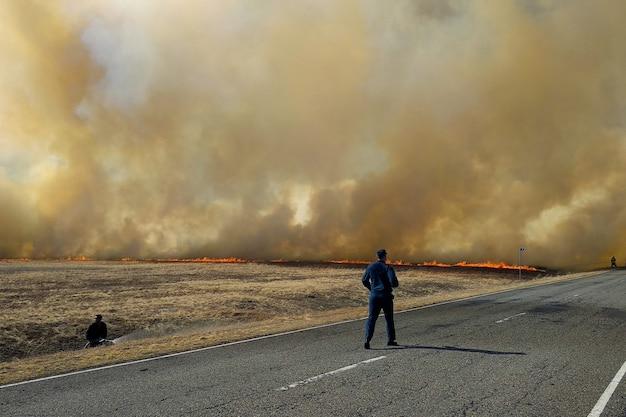 Waldbrand. feuerwehrmänner löschen ein feuer im wald durch wasserüberschwemmung