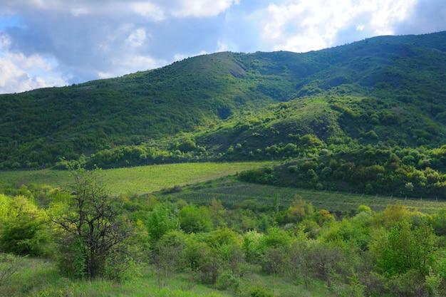 Waldgebirgskämme, landschaftsreihe, krim, ukraine.