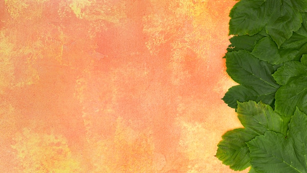 Waldgrünblätter auf orange hintergrund
