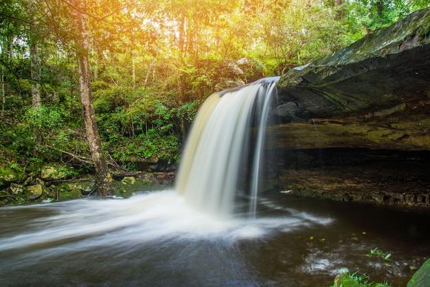 Waldnaturbetriebsbaum-dschungel des wasserfallflussstrom-grüns tropischer