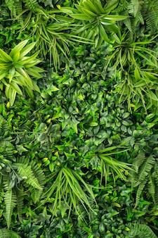 Wand, hintergrund von grünen blättern von pflanzen. innenarchitektur durch künstliche und lebende pflanzen.
