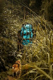 Wanderer mit reiserucksack, der mit seinem beagle-hund durch hohe pflanzen geht.
