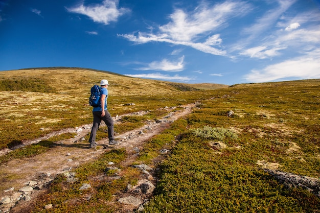 Wanderer mit rucksack, der in den norwegischen bergen dovre reist