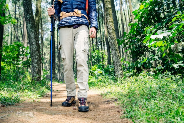 Wanderermann mit dem rucksack- und wanderstockgehen