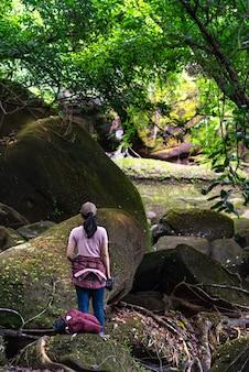 Wandererreise im regenwald