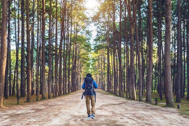 Wandermann mit rucksack, der im wald geht.