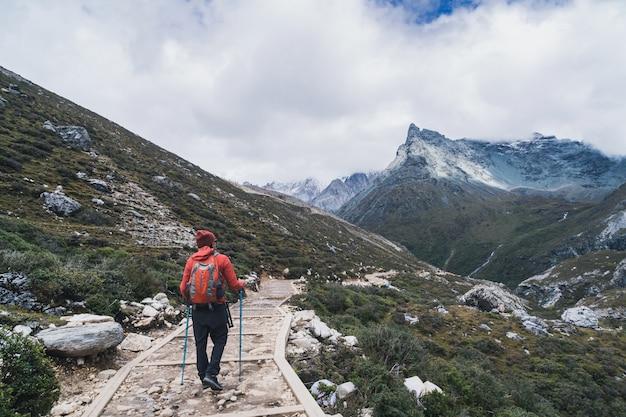 Wandern des jungen reisenden mit dem rucksack, der schöne landschaft, reiselebensstilkonzept schaut