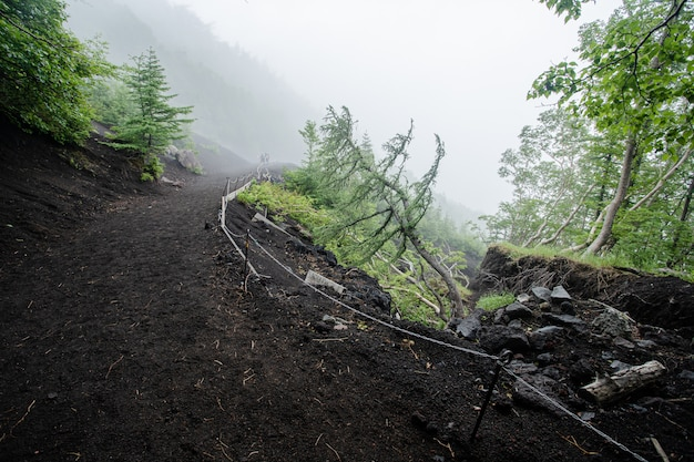 Wandern in fuji berg mit nebel