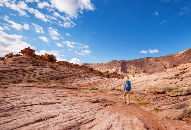 Wandern sie in den bergen von utah. wandern in ungewöhnlichen naturlandschaften. fantastische formen sandsteinformationen.