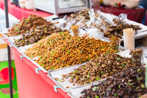 Wanze gebratenes verkaufsgeschäft asiatisches insekten-snack-food