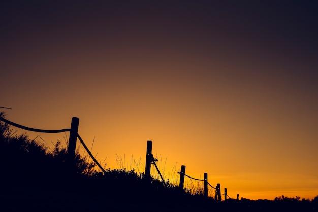 Warmer sonnenuntergang mit schattenbild von stranddünen