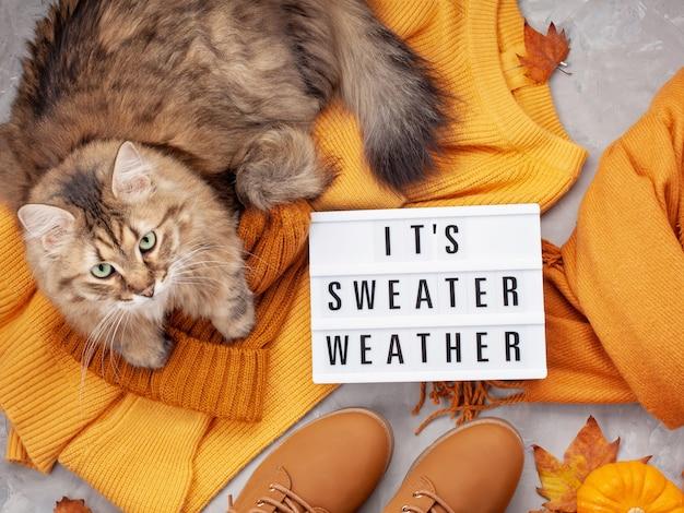 Warmes outfit für kaltes wetter in trendigen farben