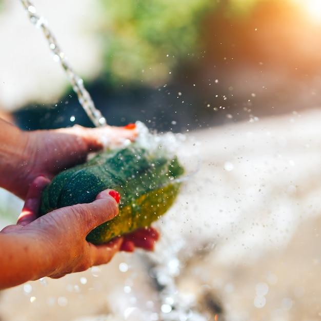Waschendes gemüse, frauenhände waschen grünes sonnenlicht der zucchini draußen