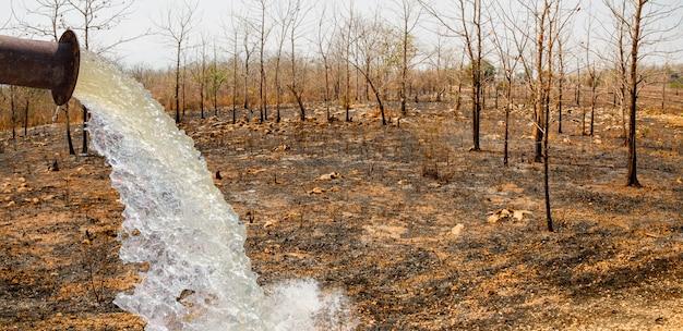 Wasser füllen trockenes gebiet durch die zerstörung von wäldern für die verlagerung des anbaus in thailand.