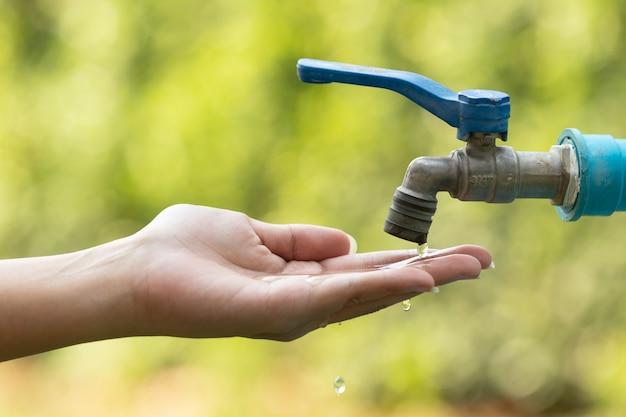 Wasser vom vorsprung, der in der hand auf natur gießt