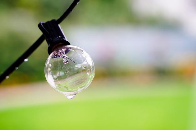 Wasserdichte outdoor-glühbirnen hängen nass vom regen auf einem natürlichen hintergrund