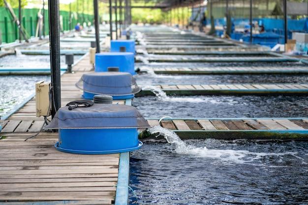 Wasserdurchflussbehandlungssystem aus der wasserpumpenleitung.