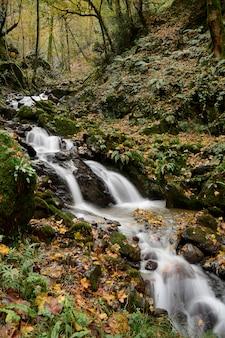 Wasserfall am berg im bunten herbstwald mit rot und orange verlässt auf felsen
