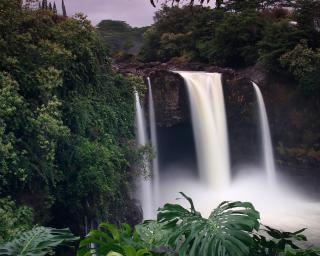 Wasserfall hilo