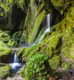 Wasserfall im dschungel der mit grünem moos bedeckten steine