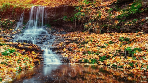 Wasserfall im herbstsonnenlicht. schönheitswelt. karpaten. ukraine. europa