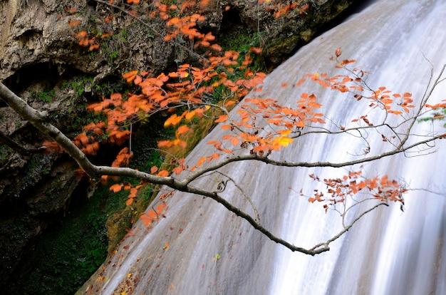 Wasserfall im naturreservat des urederra-flusses. navarra. spanien