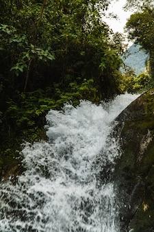 Wasserfall im nebelwald von peru