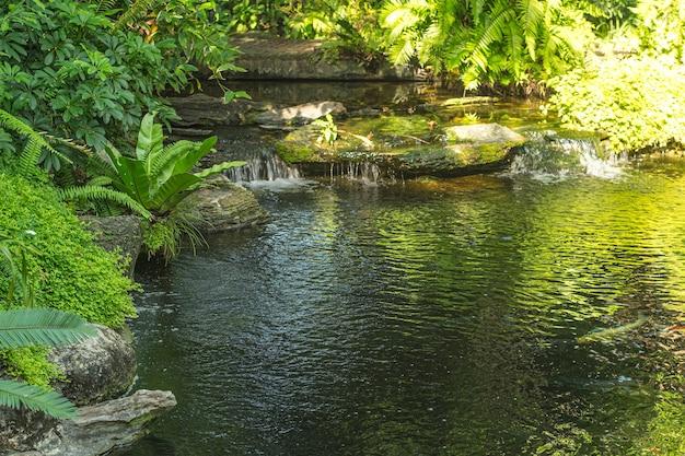 Wasserfall im tropischen garten während der frühlingssaison. schöne landschaftsgestaltung mit schönen pflanzen