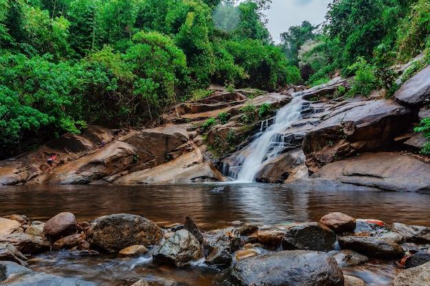Wasserfall im wald mit grüner baumlandschaftsnaturoberfläche