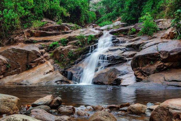 Wasserfall im wald mit grüner baumnatur