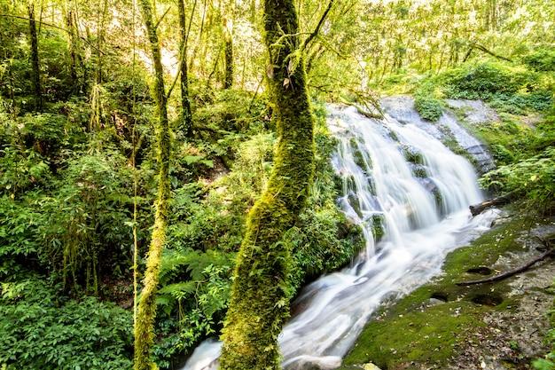 Wasserfall im wald von doi inthanon nationalpark, chiang mai, thailand